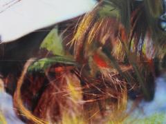 """""""Sobre el paisaje #52"""", ceras sobre fotografía, 20 x 15 cm, 2009"""
